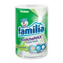 Toalla cocina FAMILIA acolchada x80 unds